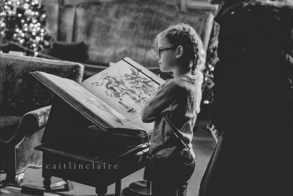 Caitlin_Claire_Studio_Photography_Nutcracker_Paine_Art_Museum_Oshkosh_10
