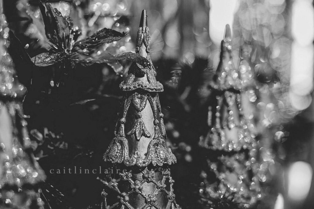 Caitlin_Claire_Studio_Photography_Nutcracker_Paine_Art_Museum_Oshkosh_15