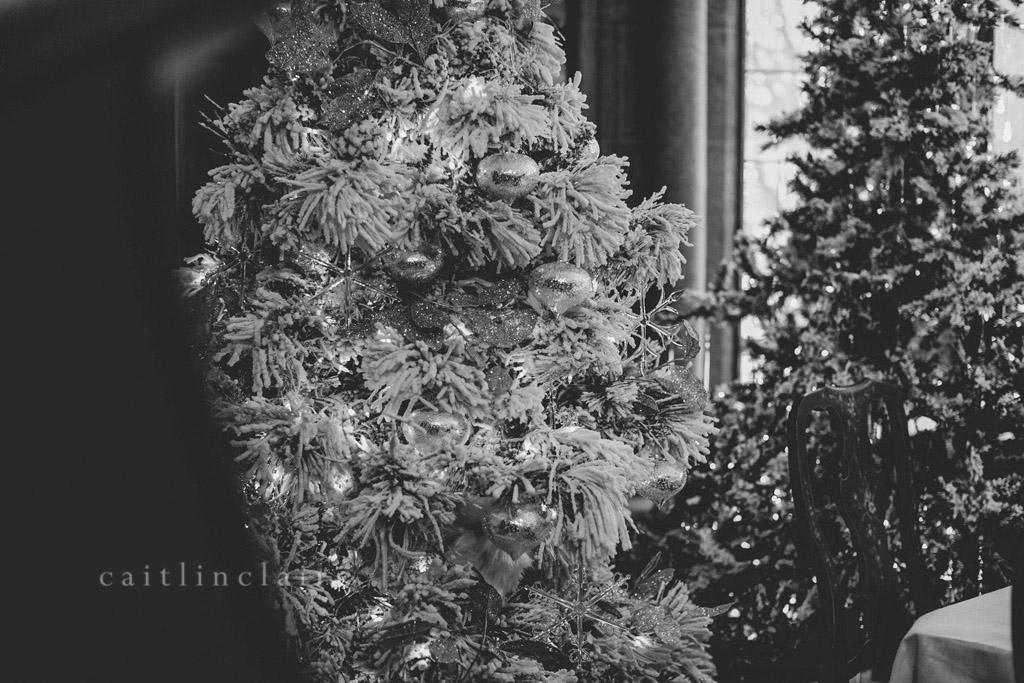 Caitlin_Claire_Studio_Photography_Nutcracker_Paine_Art_Museum_Oshkosh_20