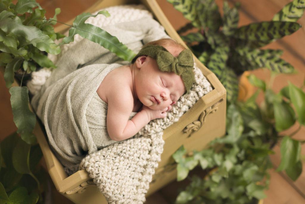 Appleton Newborn